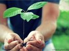 Nachhaltigkeits-Entwicklung ist in vollem Gange